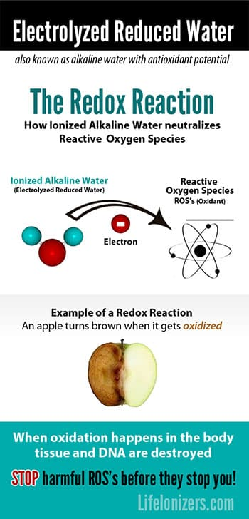 electrolyzed reduced water redox reaction infographic