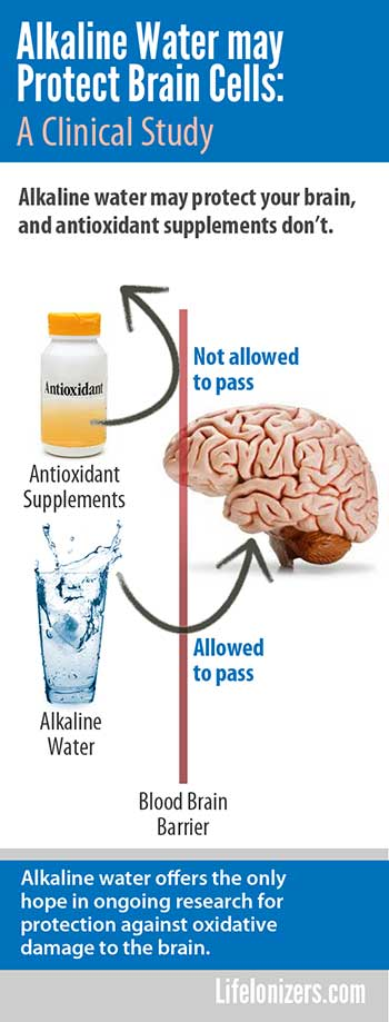 alkaline water may protect brain cells infographic