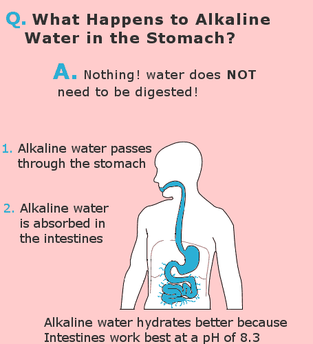 effect of alkaline water in the stomach infographic