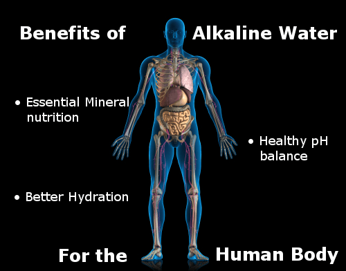 benefits of alkaline water for the human body infographic