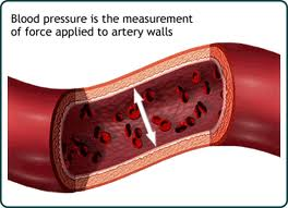blood pressure cutaway view of artery
