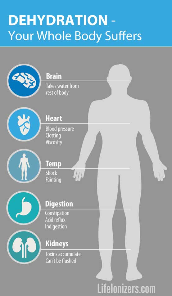 effects of dehydration on the body infographic