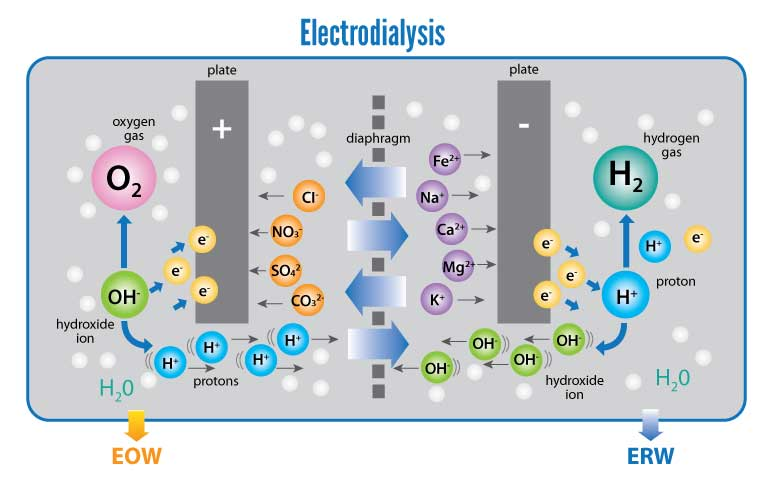 how-water-ionizer-works-electrodailysis-infographic