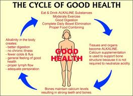 Alkaline Cycle of good health