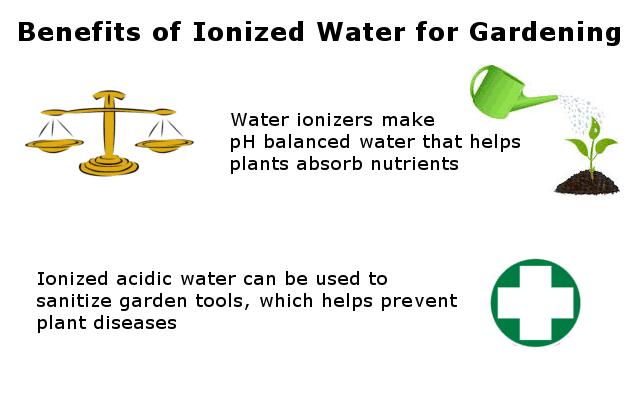 Why you need ionized water to water your plants infographic