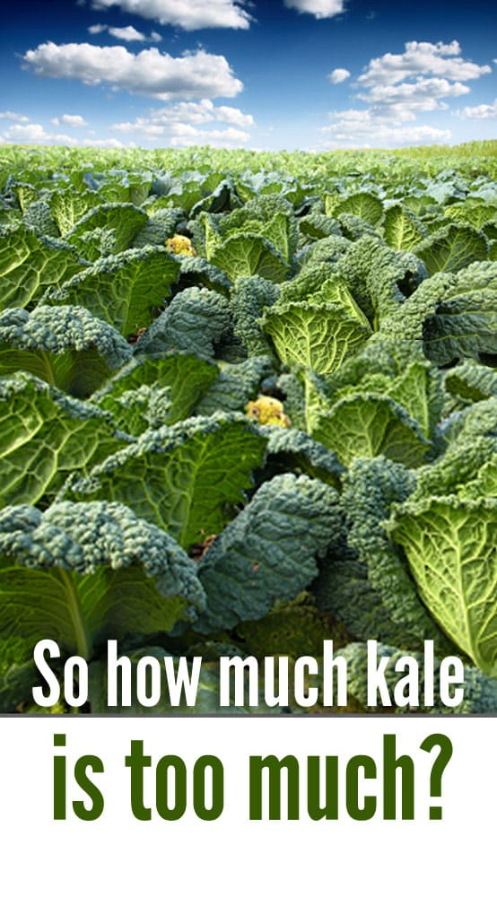 is kale bad for my thyroid image