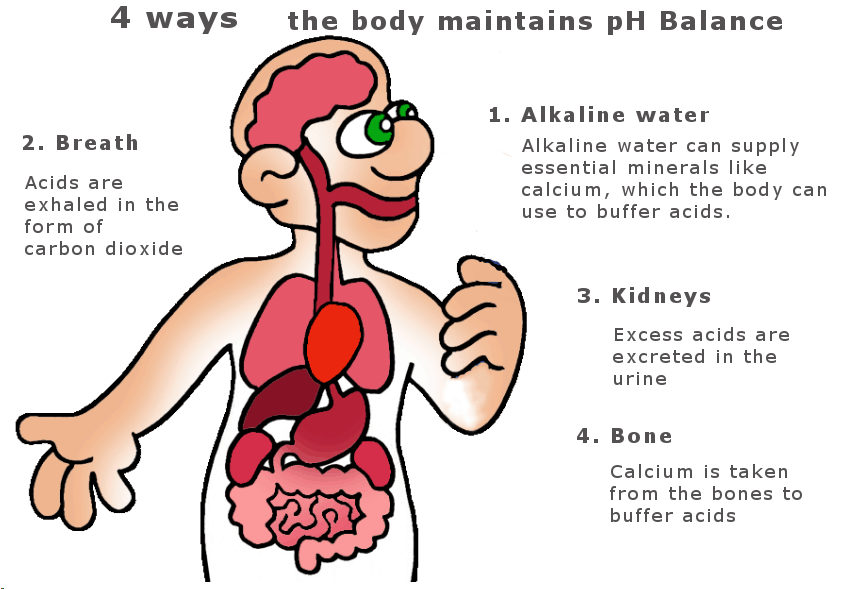 4 ways to maintain pH balance infographic