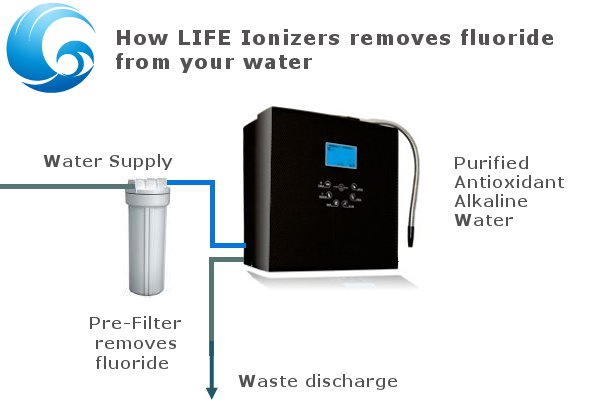 How Life Ionizers removes fluoride from water infographic