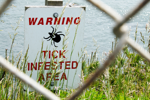 Tick Infested Area Sign