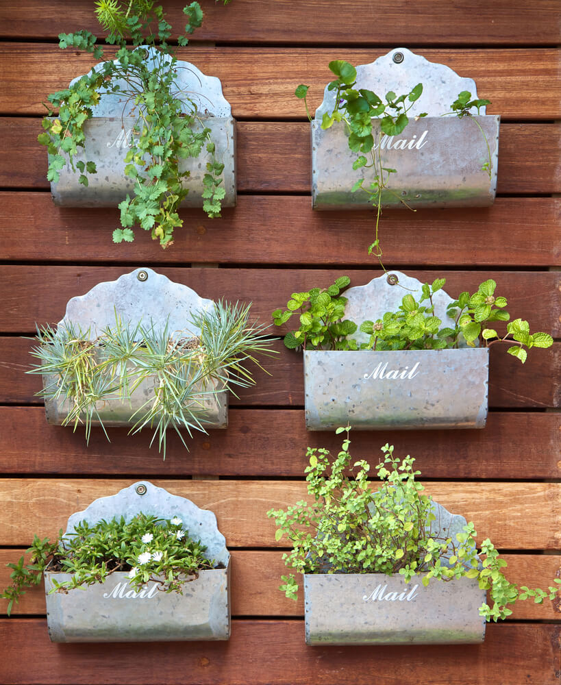 Choose out-of-the-box containers to make your plants part of your decorating style.