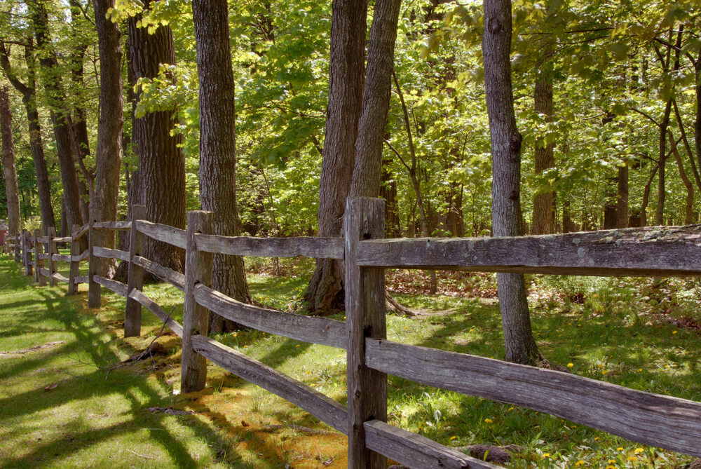 Many split rail fences are older and more common in historically older properties.