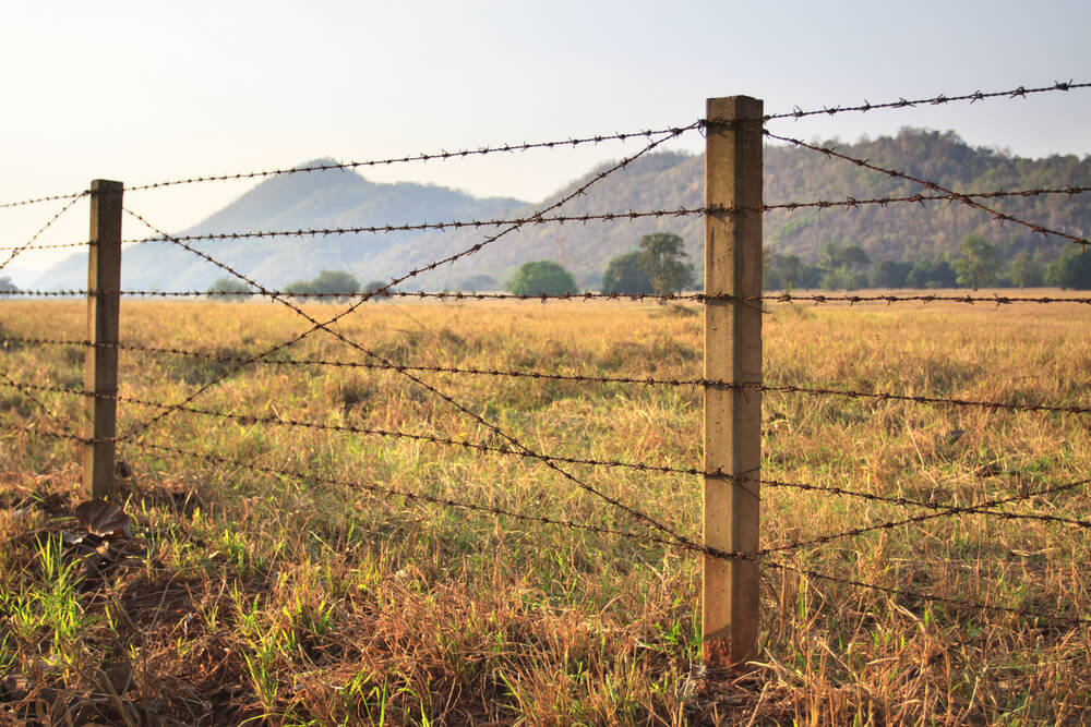 Barb wire fencing is a staple at many ranches and farms. It is a cheap and effective way to keep animals contained and potential threats away.