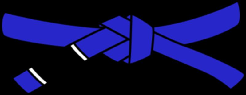 Bjj blue belt