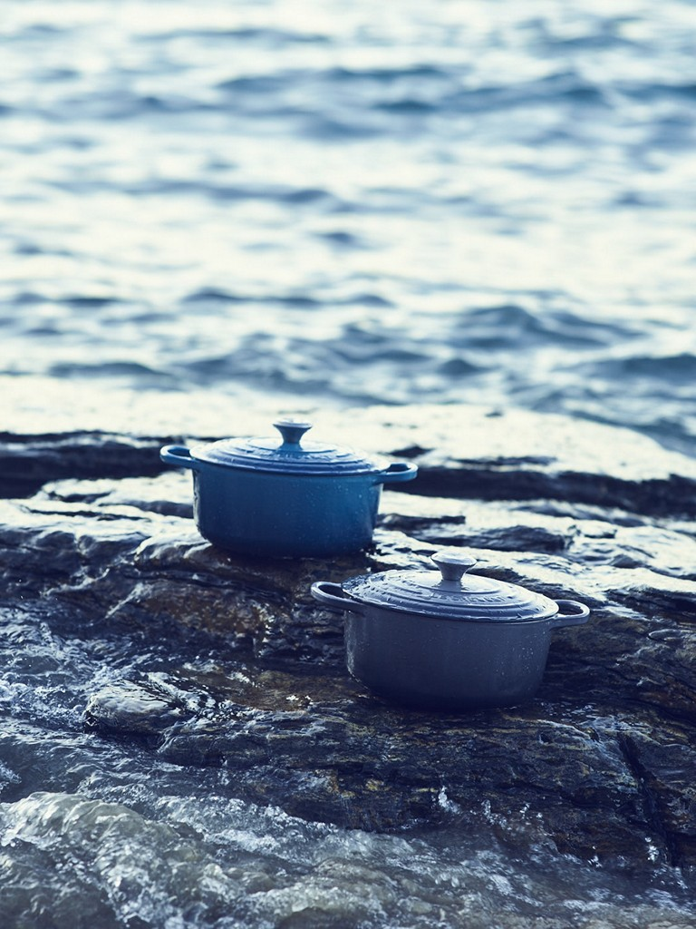 New Marine and Oyster dutch ovens perched on a wet beach-side rock