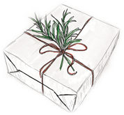 gift package icon