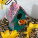 Bird-Themed Sensory Bin