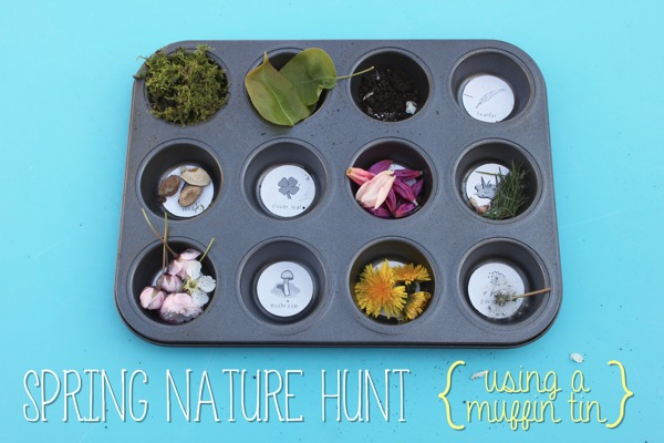 Spring Nature Hunt Using a Muffin Tin | Mama Papa Bubba