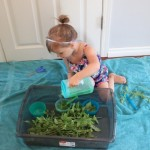 Fresh Mint Sensory Play