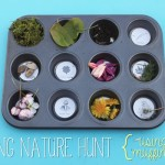 {Muffin Tin} Spring Nature Hunt