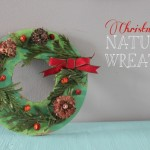 Christmas Nature Wreath