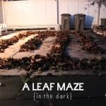 A Leaf Maze {in the dark}