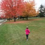 Rainbow-Coloured Trees