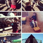 iPhoneography // Thanksgiving Saturday at Davison Orchards