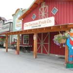 A Vernon Favourite: Davison Orchards