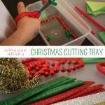 Christmas Cutting Tray