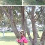 Grass & Trees