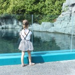 A Local Favourite: The Vancouver Aquarium