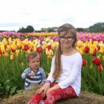 The Abbotsford Tulip Festival