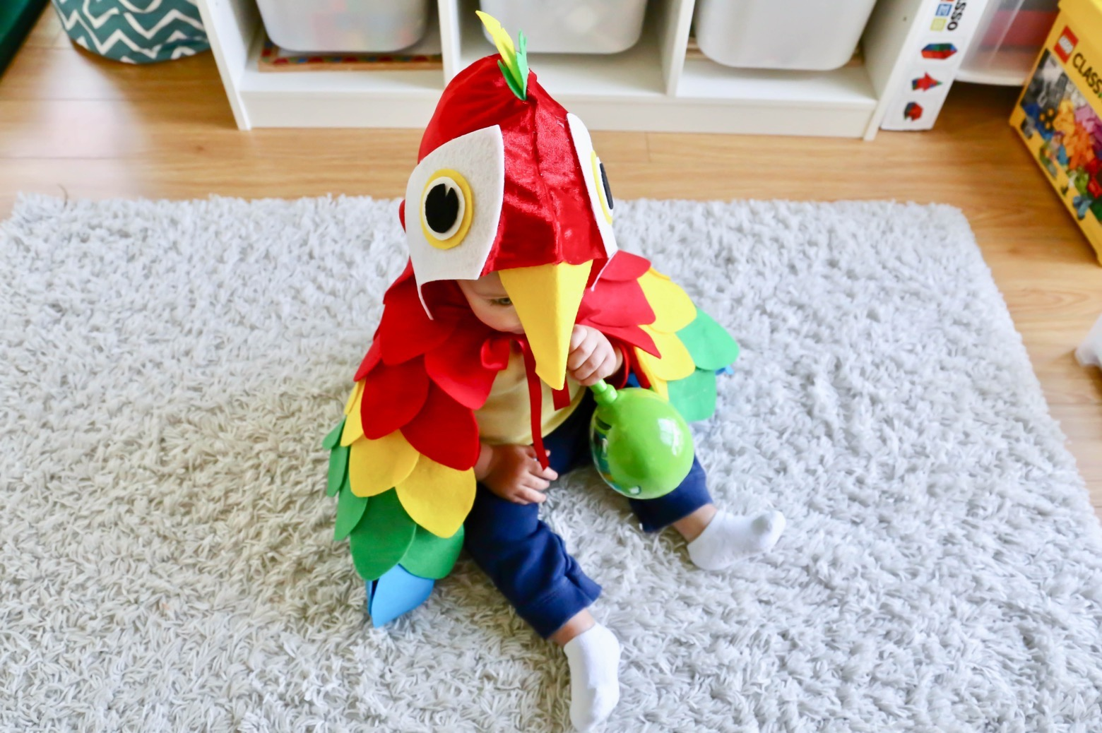 Easy No-Sew Parrot Costume