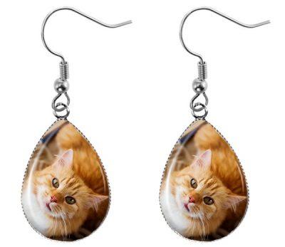 Orange Cat Earrings Dangle Earrings