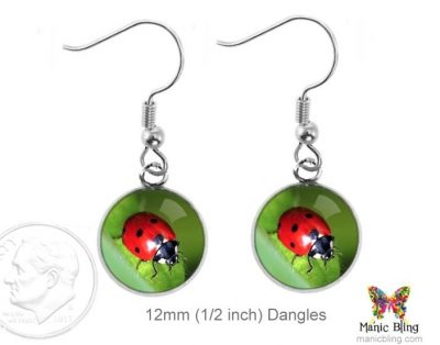 Ladybug Earrings Dangle Earrings