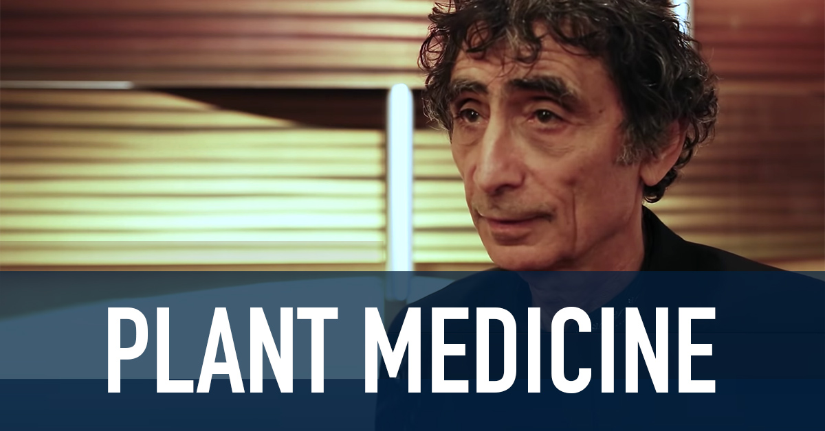 plant-medicine
