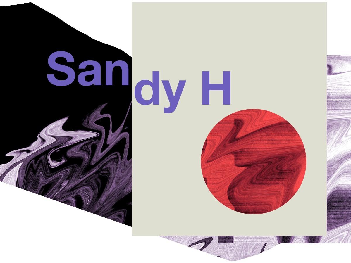 Sandy H
