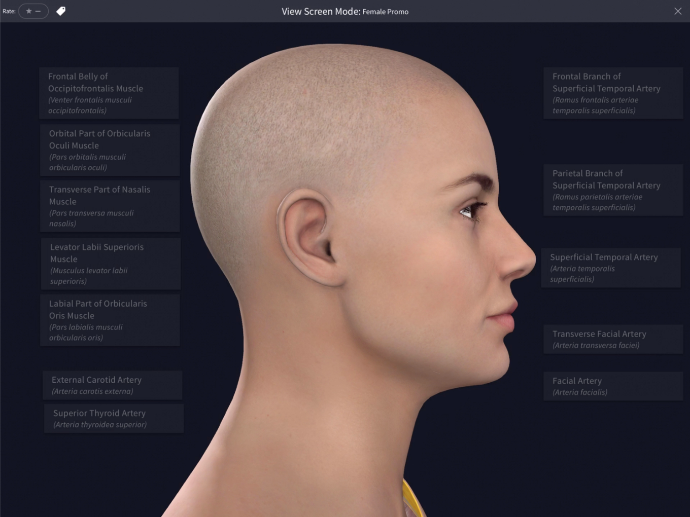Complete Anatomy – The world's most advanced 3D anatomy platform