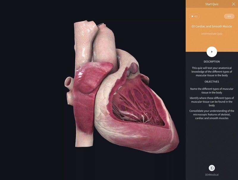 Quizzes 3d4medical