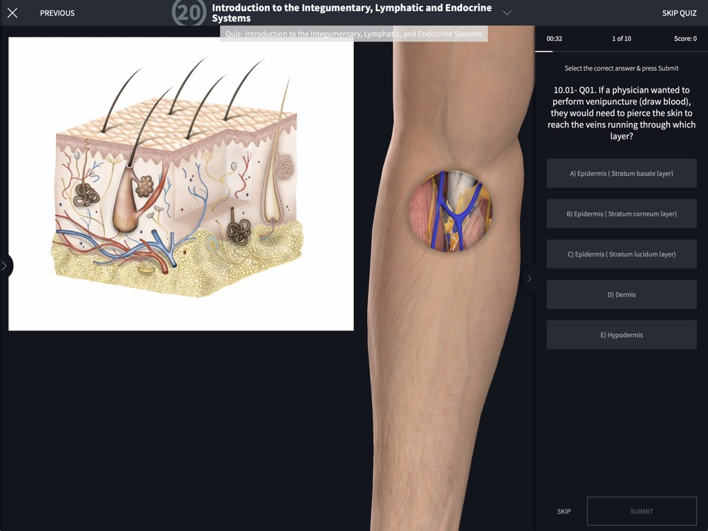 Undergraduate Human Anatomy 3d4medical