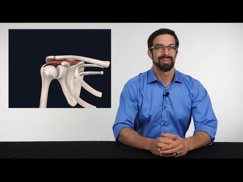 Orthopedic Special Tests of the Shoulder