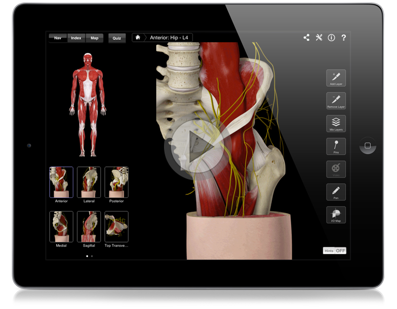 Hip Pro 3d4medical