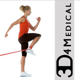 rehab for lower limbs 3d4medical