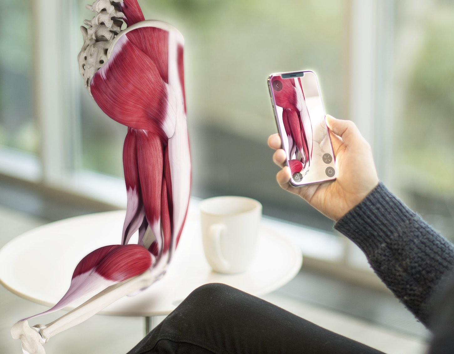 Multi Award Winning Complete Anatomy Comes To Iphone 3d4medical