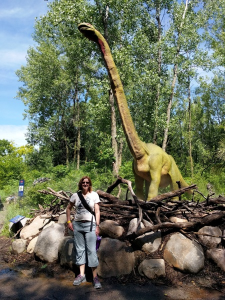 Dinosaurs at the MN Zoo!