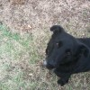 Black Betty. Isn't she precious?