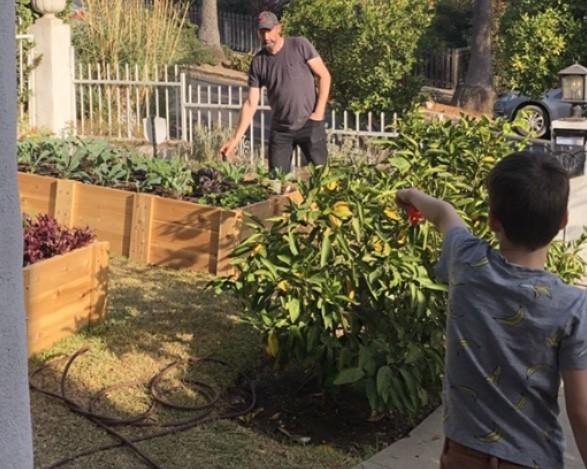 Tim's amazing vegetable garden!