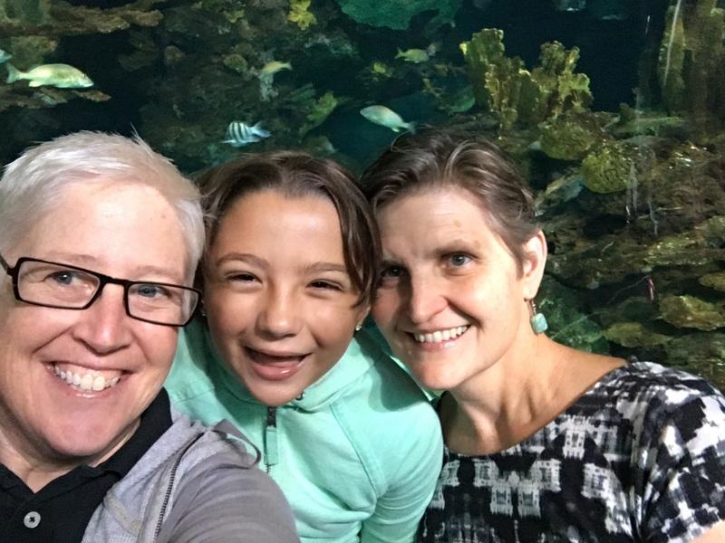 Visiting a nearby aquarium