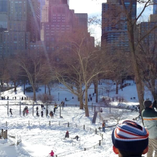 Com-central-park-winter
