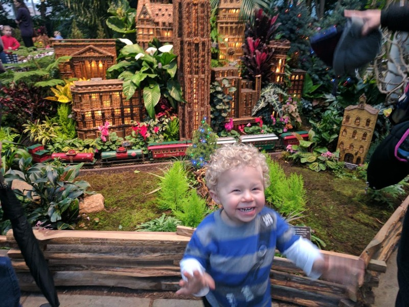 Botanical Gardens holiday train show
